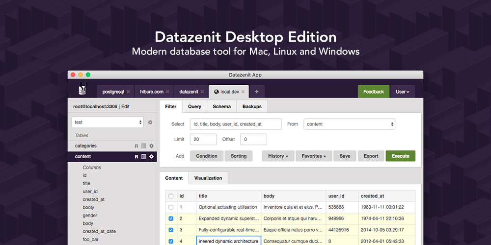 Datazenit Desktop App – Modern GUI for MySQL and PostgreSQL